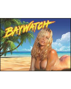 Baywatch Alternate Translite (NSFW)