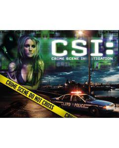 CSI Alternate Translite