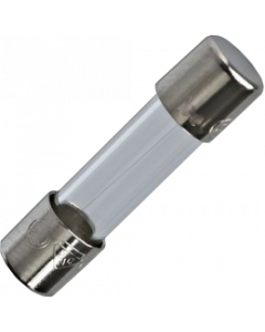 Fuse Fast Blow 0.1A 250V (5mm x 20mm)