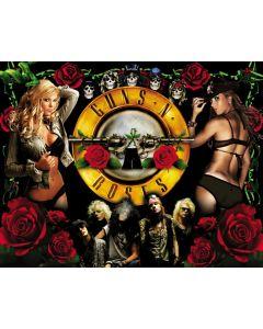 Guns N' Roses Alternate Translite 1