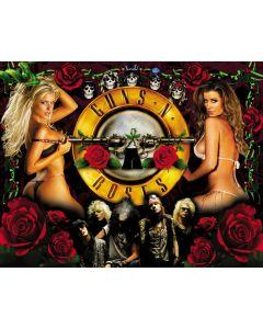 Guns N' Roses Alternate Translite 2