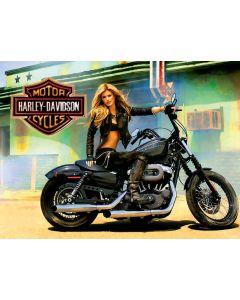 Harley Davidson Alternate Translite 2