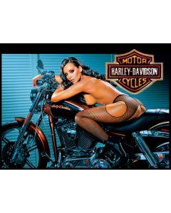 Harley Davidson Alternate Translite 4 (NSFW)