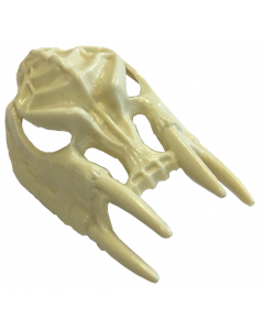 Scared Stiff Bony Beast Skull