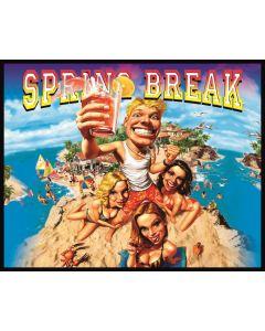 Spring Break Alternate Translite