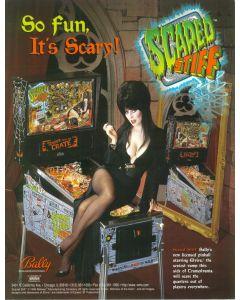 Scared Stiff Flyer