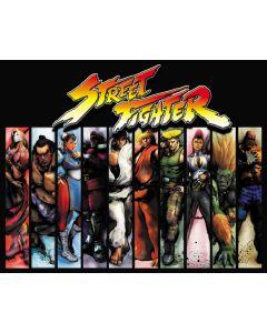Street Fighter 2 Alternate Translite 2