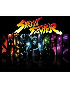 Street Fighter 2 Alternate Translite