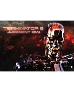 Terminator 2 Alternate Translite