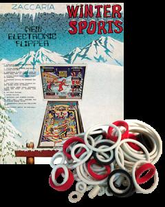 Winter Sports Rubber Set