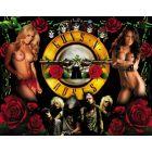 Guns N' Roses Alternate Translite 4 (NSFW)