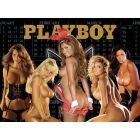 Playboy Alternate Translite (nsfw)
